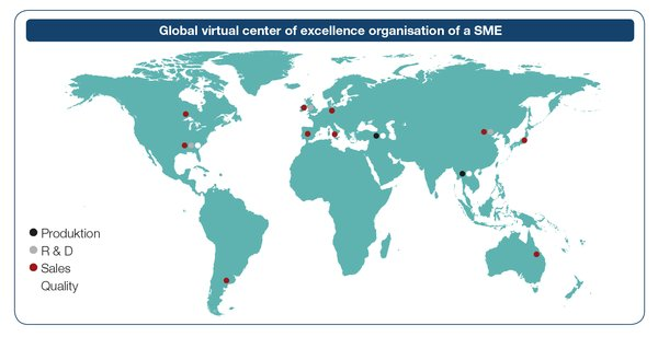 Global virtual center of excellence organization of a SME