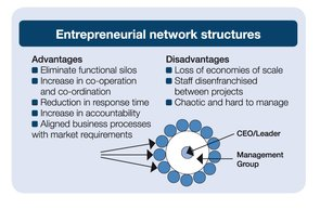 enterpreneurial network structures